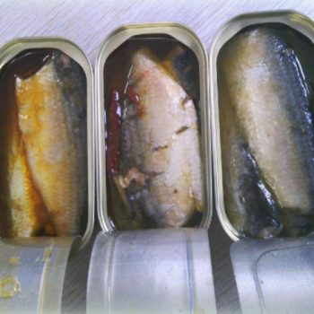 Canned sardines manufacturers canned seafood price 1-15
