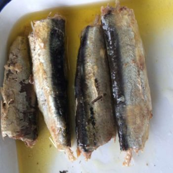 Canned Sardine in vegetable oil 125/90g 1-5